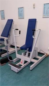 figure 3. chest press